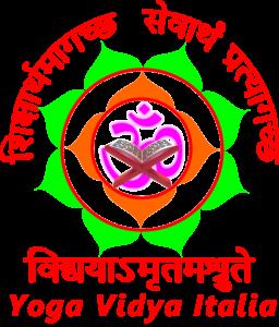 yvit-logo
